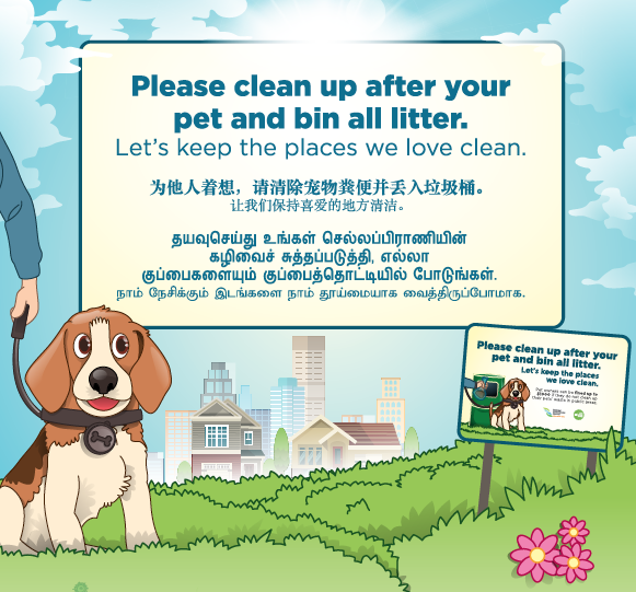 Cleaning Up Dog Poo Flyer